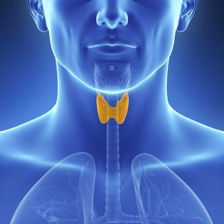 Thyroid Specialist in Pune